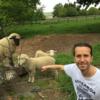 author's profile photo Aydin Nalbant