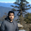Author's profile photo Debtirtha Das