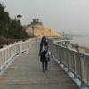 Author's profile photo jinjing huang