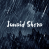 Author's profile photo Junaid Shera