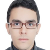 Author's profile photo Nizare DAMOUMAT