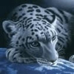 Profile picture of qw1391202028