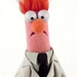 Profile picture of timmo